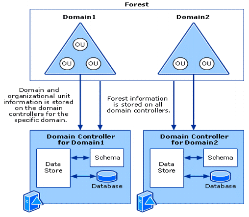 Active Directory Structure