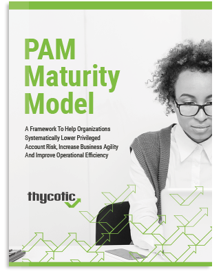 PAM Maturity Model Whitepaper
