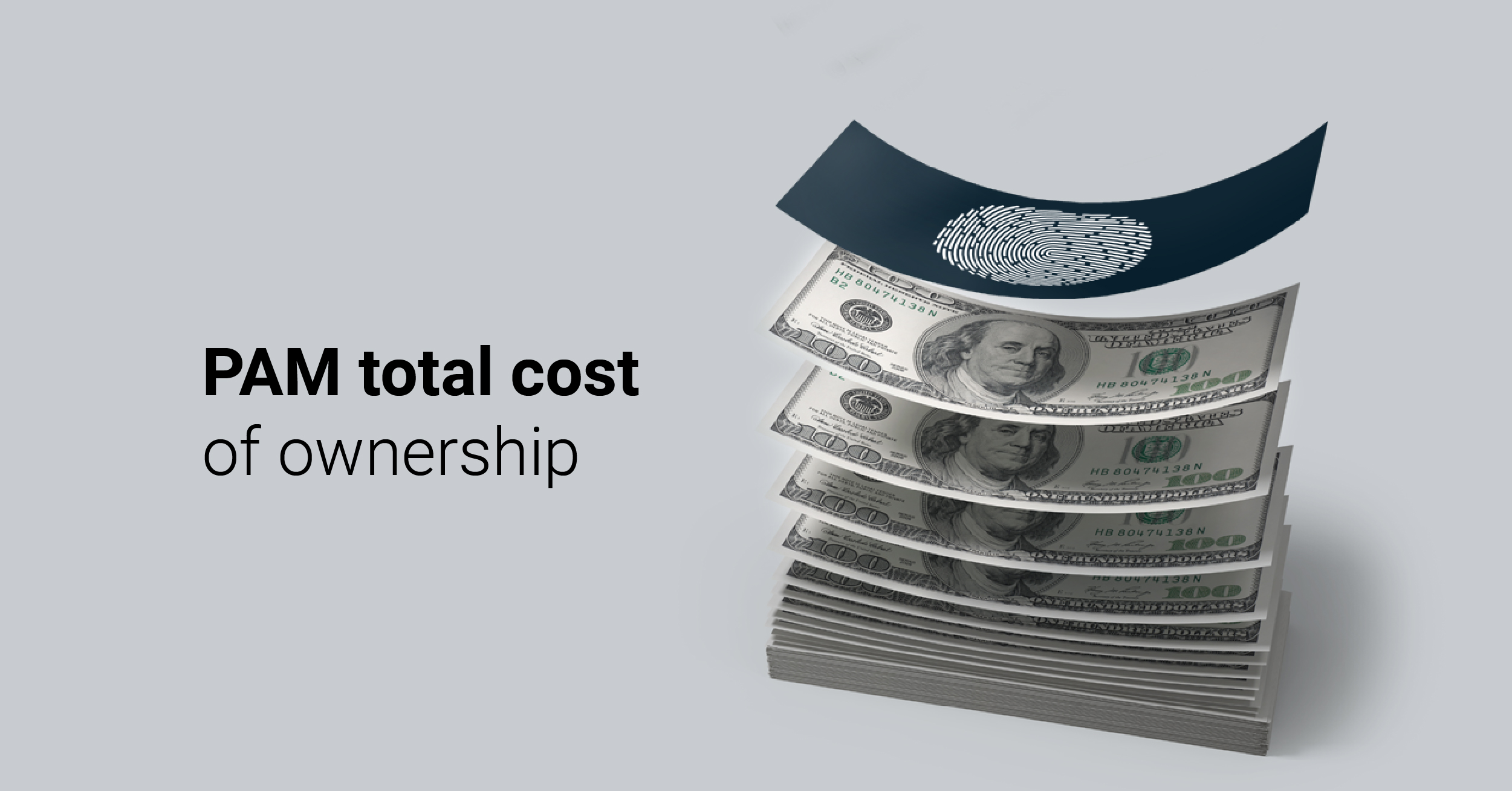 PAM TCO - Total cost of ownership