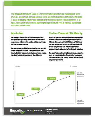 Pam Maturity Whitepaper for Cybersecurity