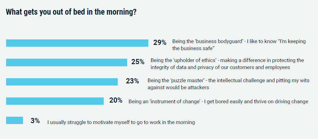 What motivates CISOs?