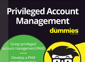 PAM for Dummies Cover